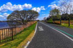 青空と緑道