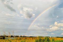 手賀沼にかかる虹