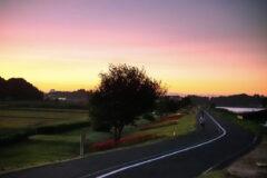 夕暮れ時の緑道とヒガンバナ